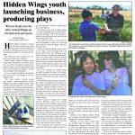 Hidden Wings Play