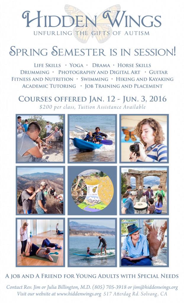 Spring 2016 courses copy